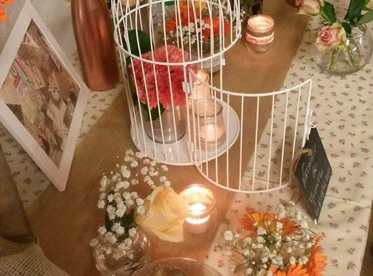 autour de la cage